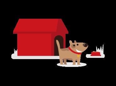 pet-insurance-ireland